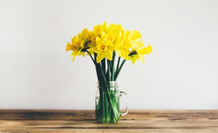 Wiosenne dodatki do kuchni